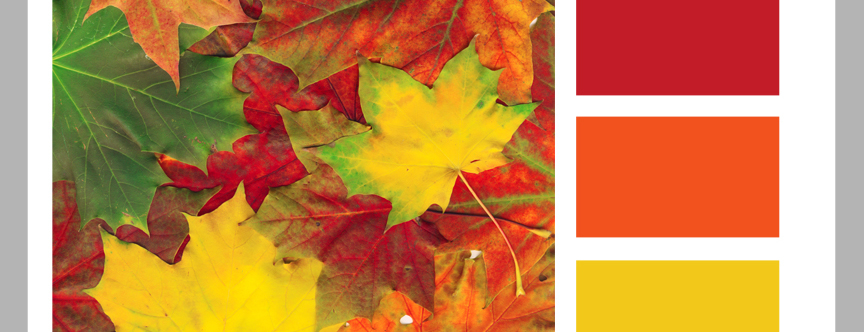 Color Formula 15: Bright Leaves